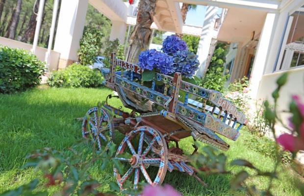 фото отеля Forest Park изображение №17