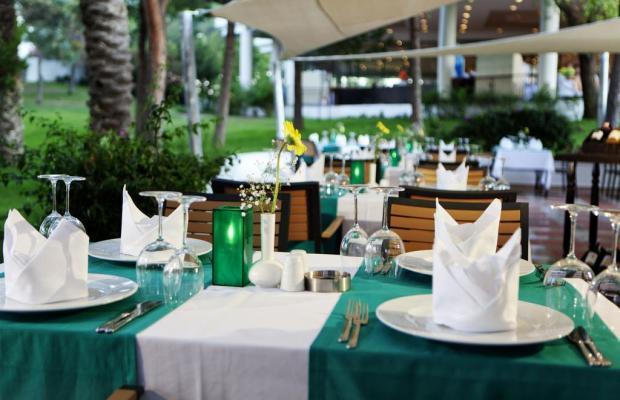 фотографии PGS Kiris Resort (ex. Joy Kiris Resort) изображение №12