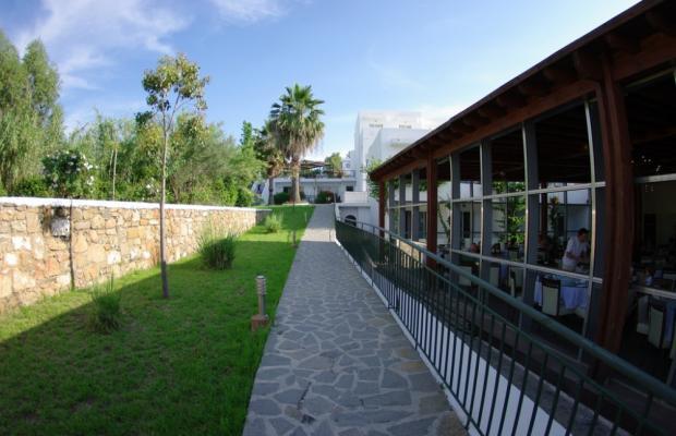 фотографии Montemar Beach Resort изображение №4
