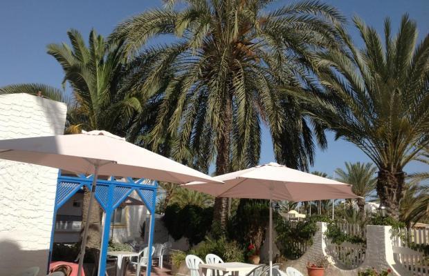 фотографии отеля Hotel Dar Ali изображение №39
