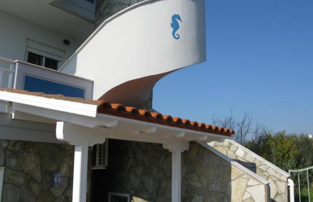 фото отеля Seaview изображение №9