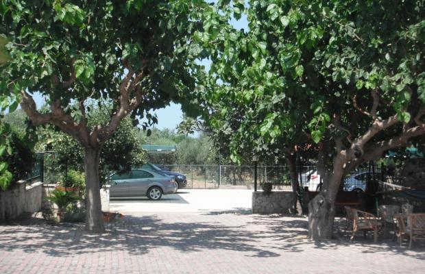 фотографии The Green Villa изображение №24