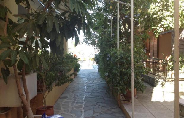 фотографии отеля Akti Aphrodite изображение №11