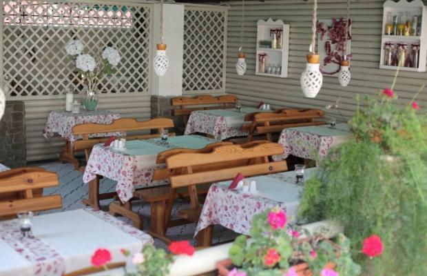фото отеля Dolce Vita изображение №5