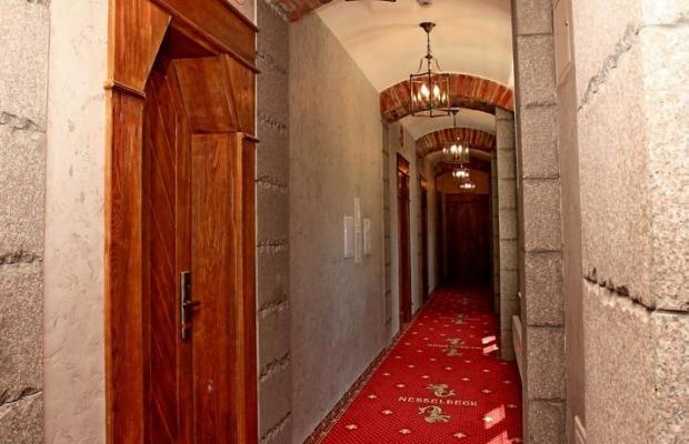 фото отеля Нессельбек (Nesselbeck) изображение №17