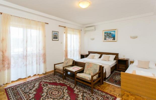 фотографии Apartments Petra (Babin Kuk) изображение №16