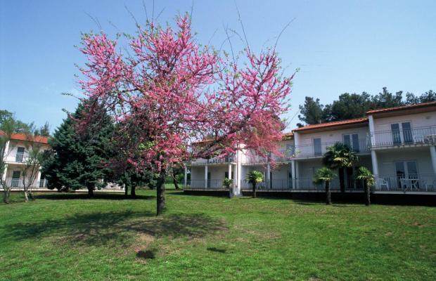 фотографии отеля Ai Pini Resort изображение №11