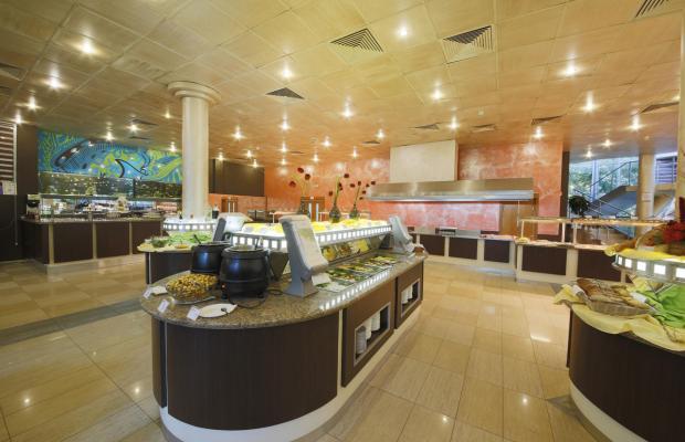 фото отеля COOEE Mimosa Sunshine (ex. Mimoza) изображение №17