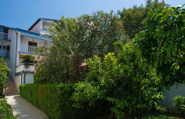 фотографии отеля Villa Becica изображение №35