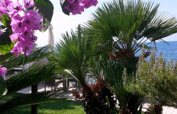 фотографии Villa Mare Mar изображение №20