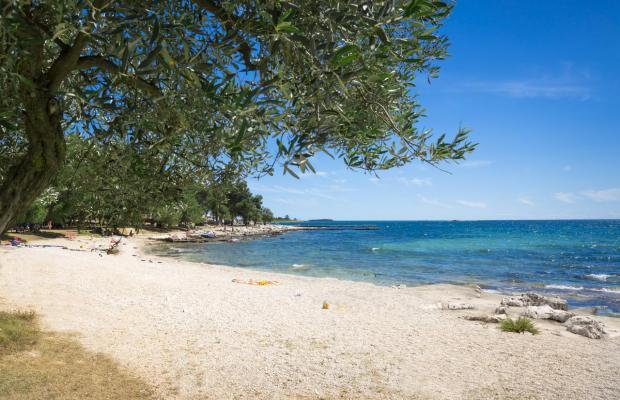 фото Maistra Villas Rubin Resort изображение №14
