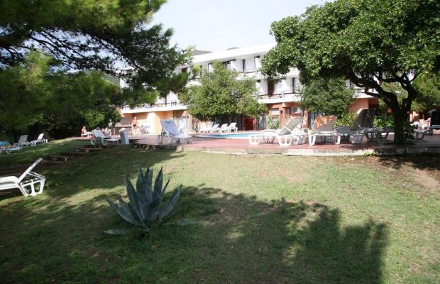 фото Hotel Kamelija изображение №18