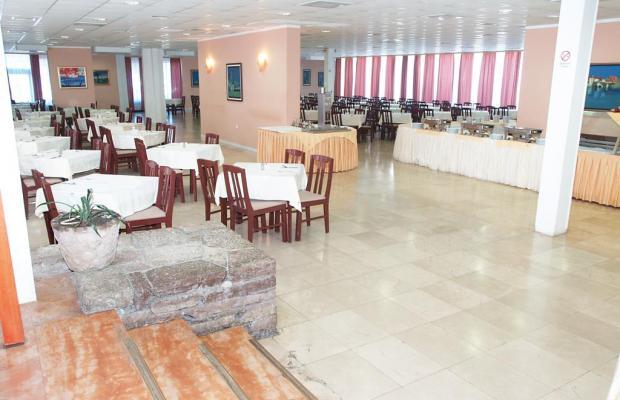 фото отеля Hotel Kamelija изображение №13