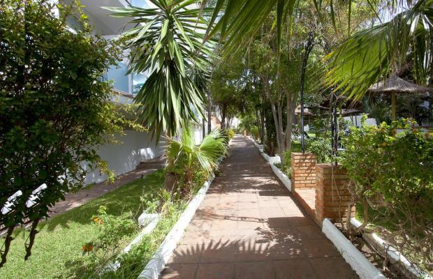 фотографии отеля Palia Las Palomas изображение №7