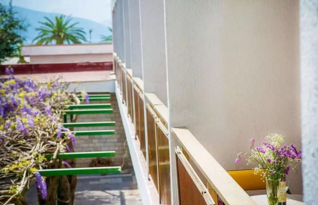 фотографии Hotel Mimoza изображение №16