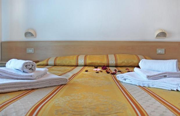 фото отеля New Primula изображение №17