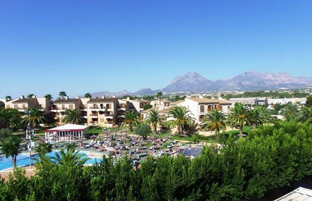 фотографии отеля Albir Garden Resort изображение №19