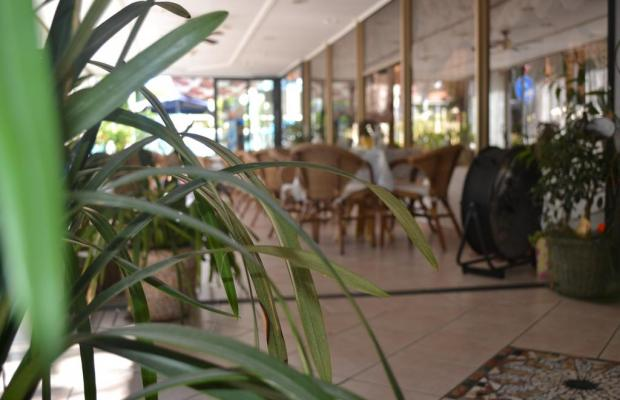фото отеля Alfredo's изображение №17