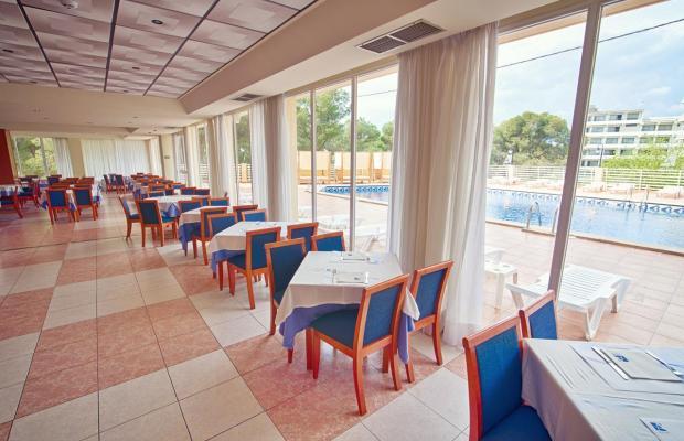 фото отеля AzuLine Hotel Bahamas (ex. Vincci Bahamas) изображение №25
