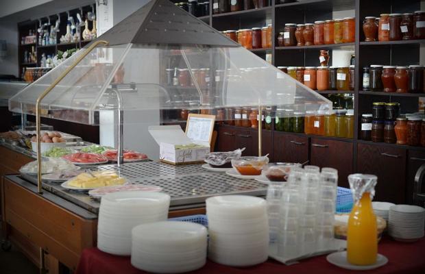 фотографии отеля Elyssia Hotel изображение №35