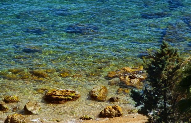 фотографии отеля Panoramic изображение №11