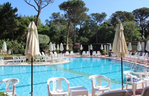 фото отеля Pineta изображение №1