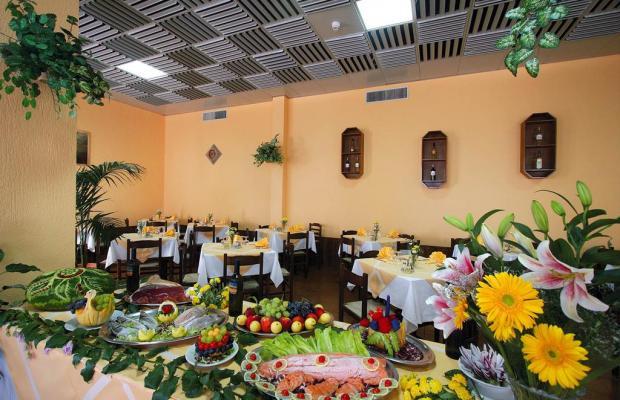 фото отеля La Pineta изображение №17