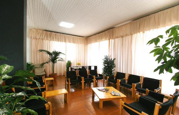 фотографии отеля La Pineta изображение №15
