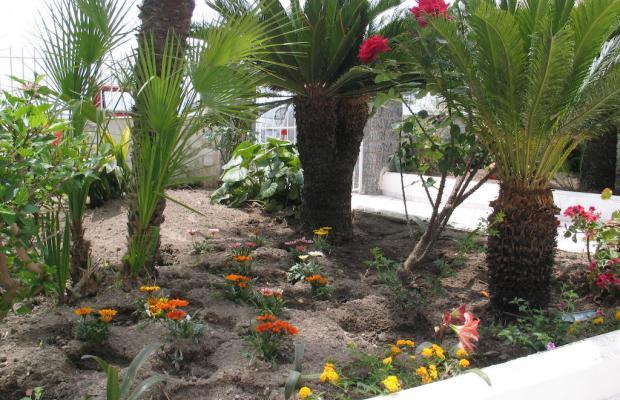 фотографии отеля Hotel Villa Bina изображение №23