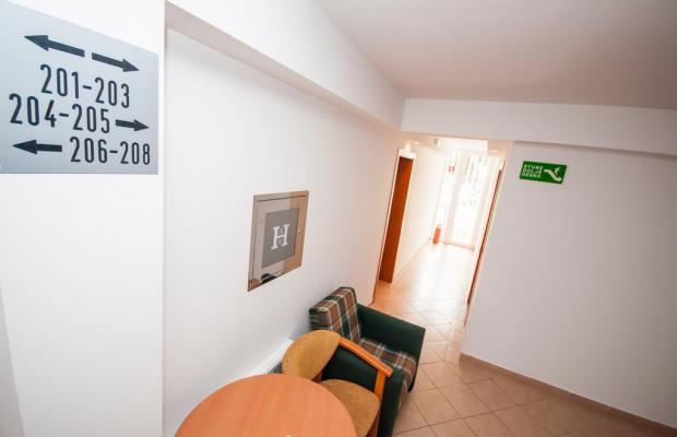 фотографии отеля Hotel Agava изображение №11