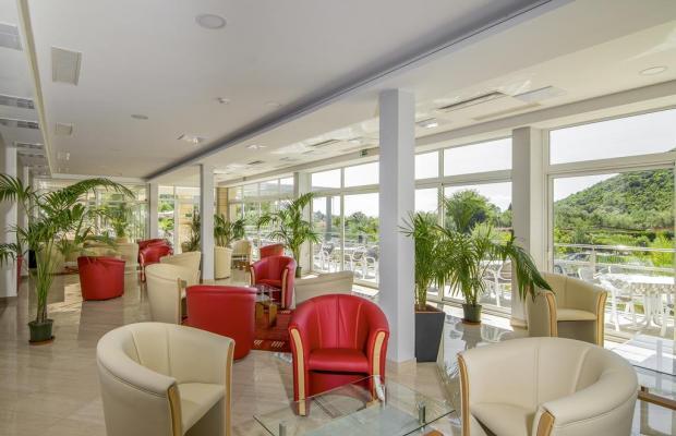 фото отеля Hedera изображение №5