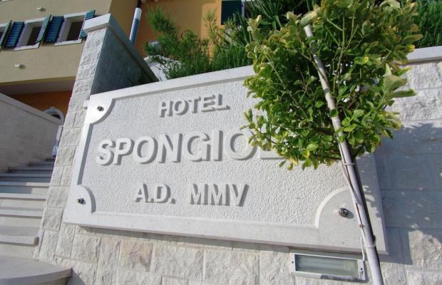 фотографии Hotel Spongiola изображение №20