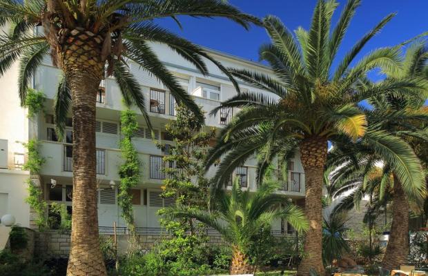 фото Villa Adriatica изображение №2