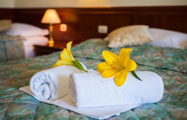 фотографии Hotel Villa Bacchus изображение №36
