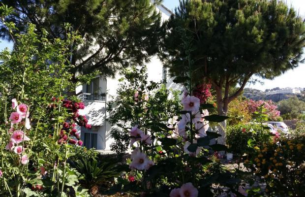 фотографии George Beach Studios & Villas изображение №16
