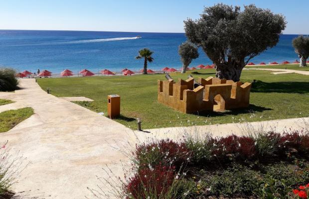 фотографии Kolymbia Beach изображение №4