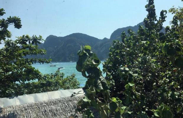 фотографии отеля Chaokoh Phi Phi Lodge изображение №3