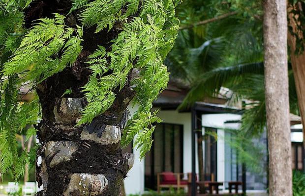 фото отеля The Mangrove Panwa Phuket Resort изображение №41
