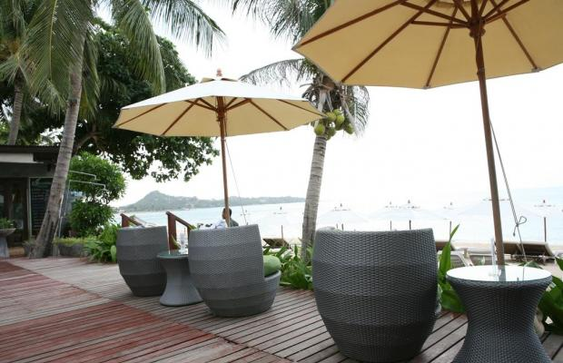 фотографии отеля Samui Jasmine Resort изображение №15