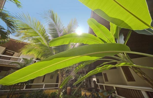 фотографии отеля Thai House Beach изображение №3