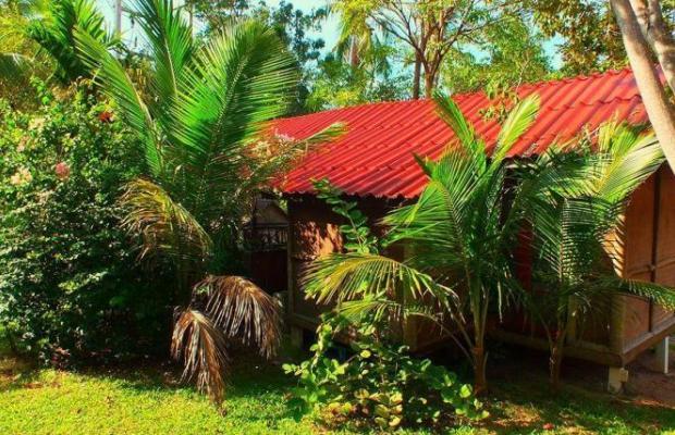 фото Tropical Garden Lounge Hotel & Resort изображение №10