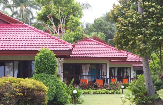 фотографии отеля Viva Vacation Resort изображение №11