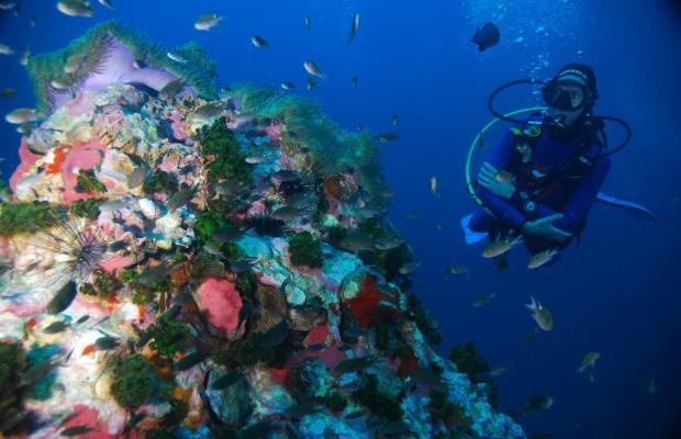 фото отеля Nangyuan Island Dive Resort изображение №53