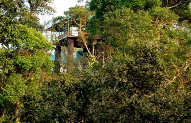 фотографии отеля Eletaria Resort изображение №3