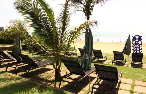 фотографии Chalston Beach Resort  изображение №28