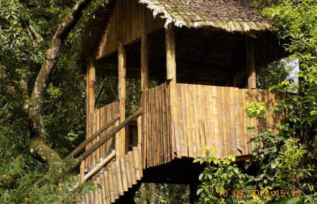 фотографии отеля Tea Valley изображение №75