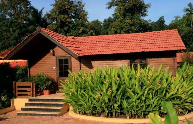 фотографии The Fern Gardenia Resort изображение №12