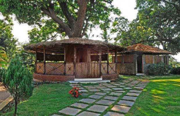 фото Devaaya Ayurveda & Nature Cure Centre изображение №26