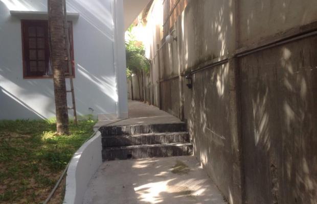 фото Ngoc Duy изображение №18