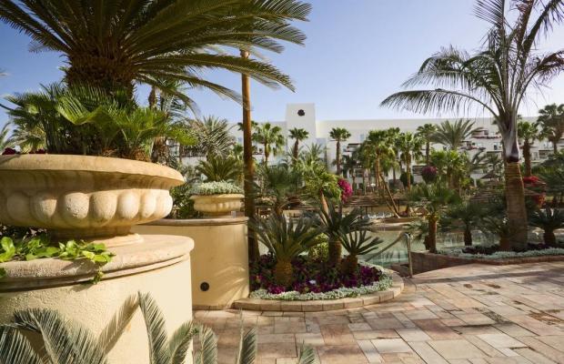 фотографии отеля Isrotel Royal Garden изображение №23